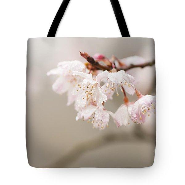 Prunus Hirtipes Tote Bag by Anne Gilbert