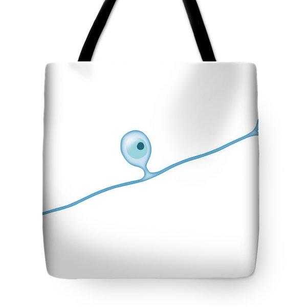 Pseudounipolar Neuron Tote Bag