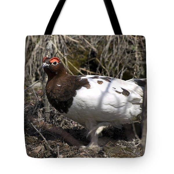 Ptarmigan  Tote Bag by Tara Lynn