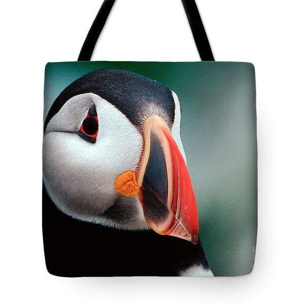 Tote Bag featuring the photograph Puffin Head Shot by Jerry Fornarotto