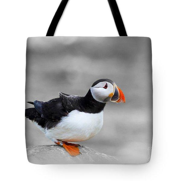 Puffin Bokeh Tote Bag