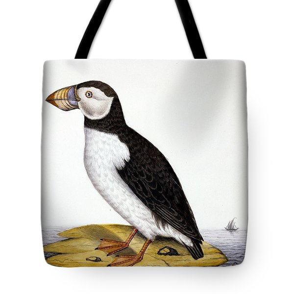 Puffin, Marmon Fratercula, Circa 1840 Tote Bag by French School