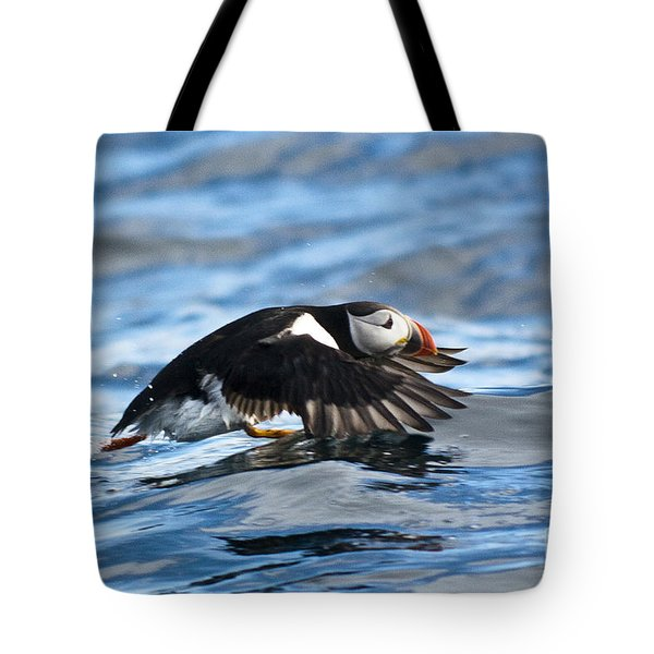 Puffin Starting To Fly Tote Bag by Heiko Koehrer-Wagner