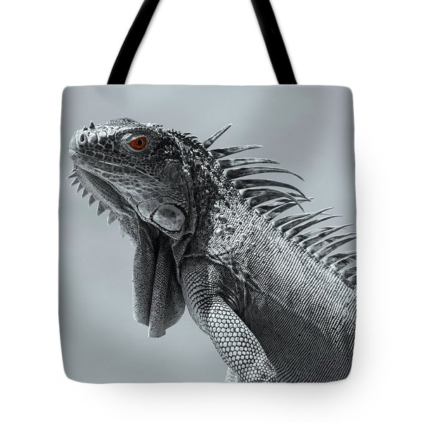 Tote Bag featuring the photograph Pugnacious by Patrick Witz