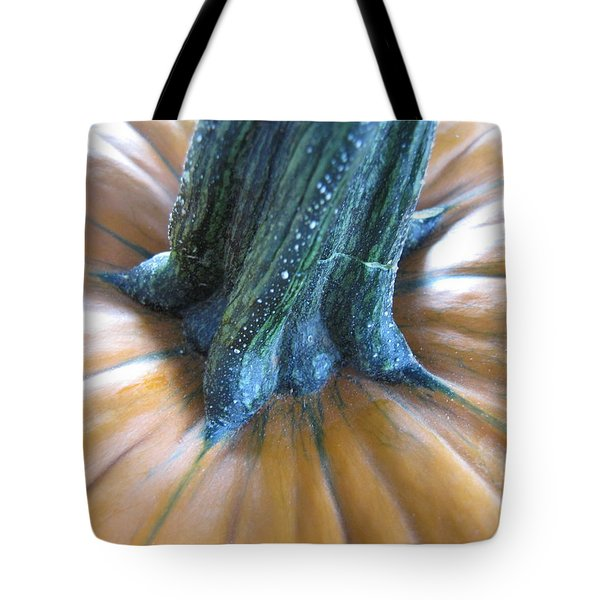 Tote Bag featuring the photograph Pumpkin by Beth Vincent