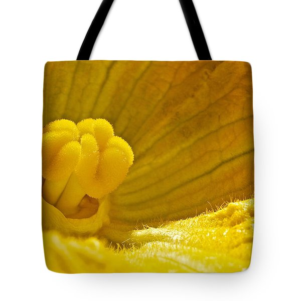 Tote Bag featuring the photograph Pumpkin Blossom by Linda Bianic