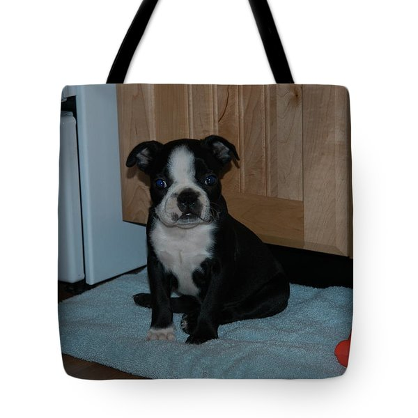 Puppy Boston Terrier And Toy Tote Bag