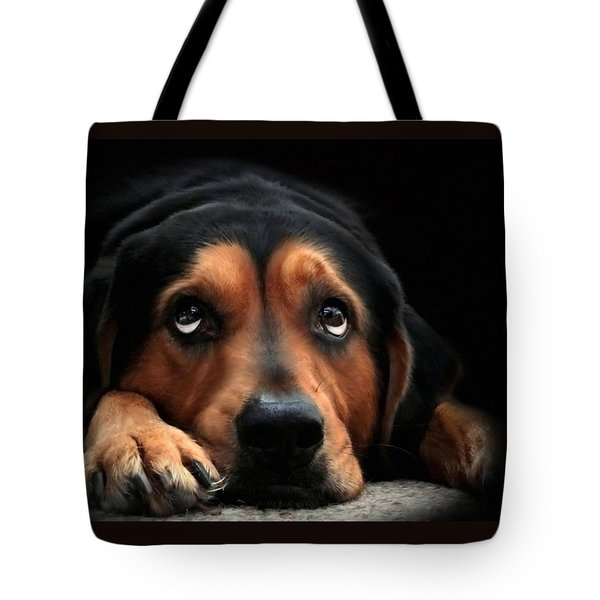 Tote Bag featuring the mixed media Puppy Dog Eyes by Christina Rollo