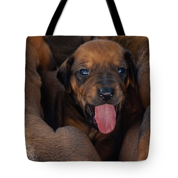 Puppy Tote Bag by Mim White