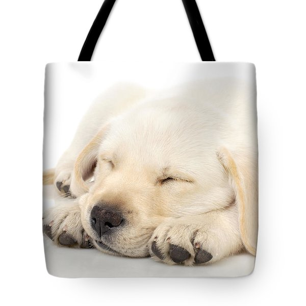 Puppy Sleeping On Paws Tote Bag by Johan Swanepoel