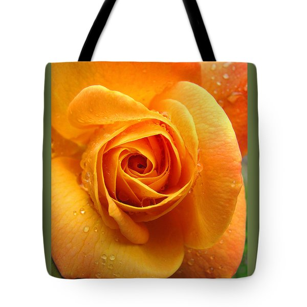Tote Bag featuring the photograph Pure Gold - Roses From The Garden by Brooks Garten Hauschild