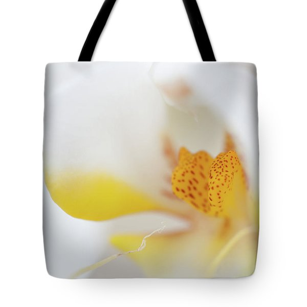 Pure White Tote Bag by Sebastian Musial