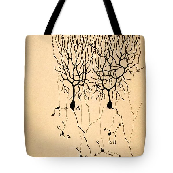 Purkinje Cells By Cajal 1899 Tote Bag by Science Source