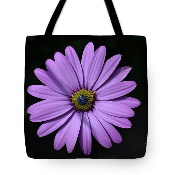 Purple African Daisy Tote Bag
