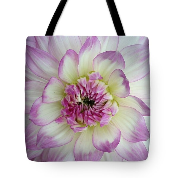 Tote Bag featuring the photograph Purple And Cream Dahlia by Jeannie Rhode