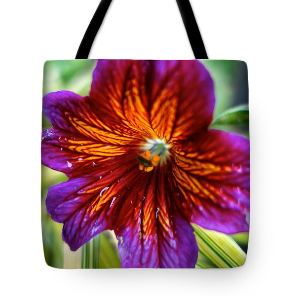 Purple And Orange Tote Bag by Jacqueline Athmann