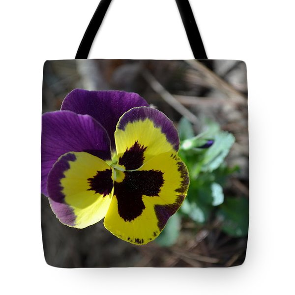 Tote Bag featuring the photograph Purple And Yellow Pansy by Tara Potts