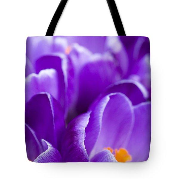 Purple Tote Bag by Anne Gilbert