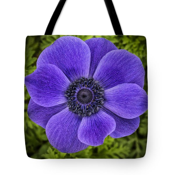 Purple Blue Anemone Tote Bag by Jaki Miller