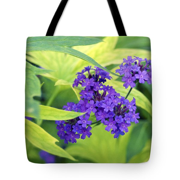 Tote Bag featuring the photograph Purple Bunch  by Haleh Mahbod