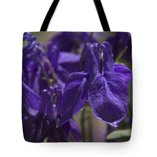 Purple Colimbine 1 Tote Bag