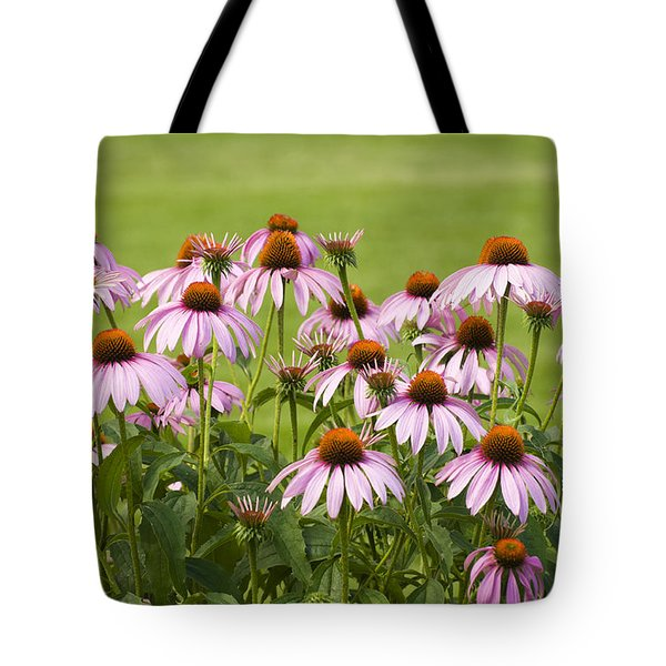 Purple Cone Flowers Tote Bag