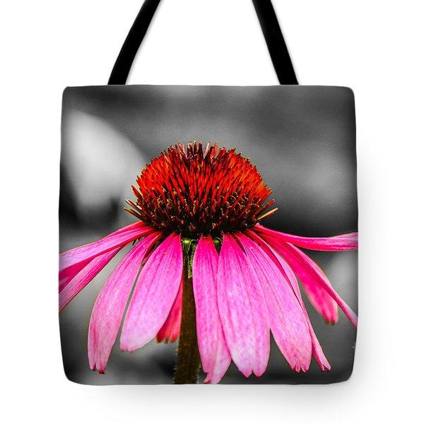 Purple Coneflower - Sc Tote Bag