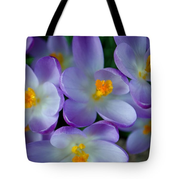 Purple Crocus Gems Tote Bag