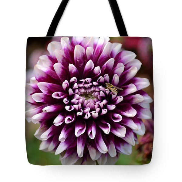 Purple Dahlia White Tips Tote Bag