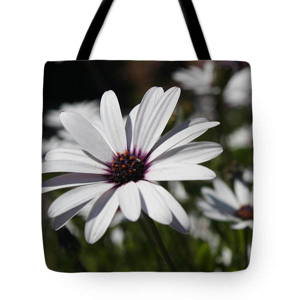 Purple Daisies 2 Tote Bag