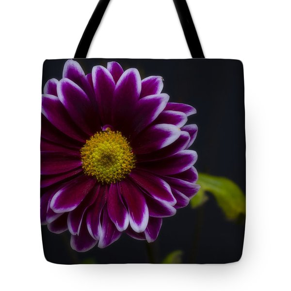 Purple Daisy Tote Bag by Dennis Reagan