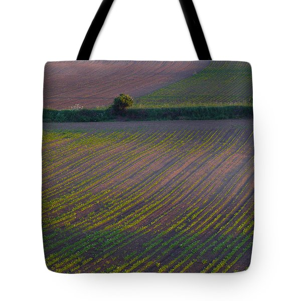 Tote Bag featuring the photograph Purple Fields by Evelyn Tambour