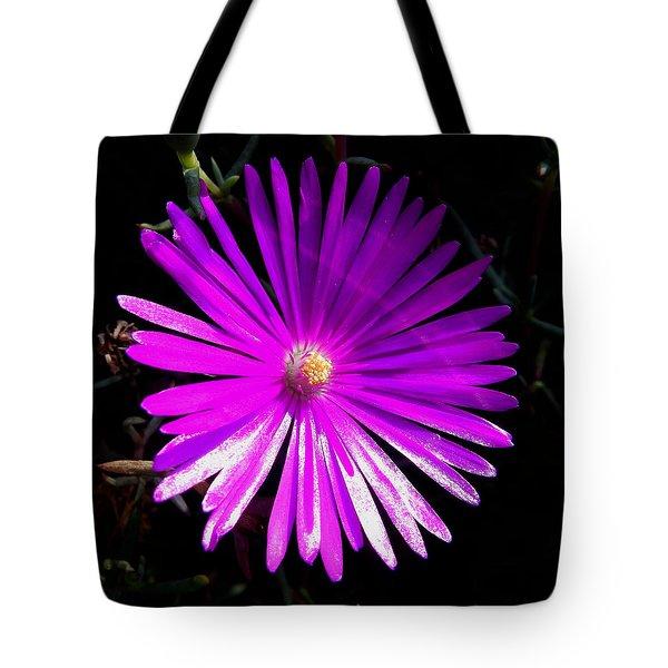 Purple Glow Tote Bag by Pamela Walton