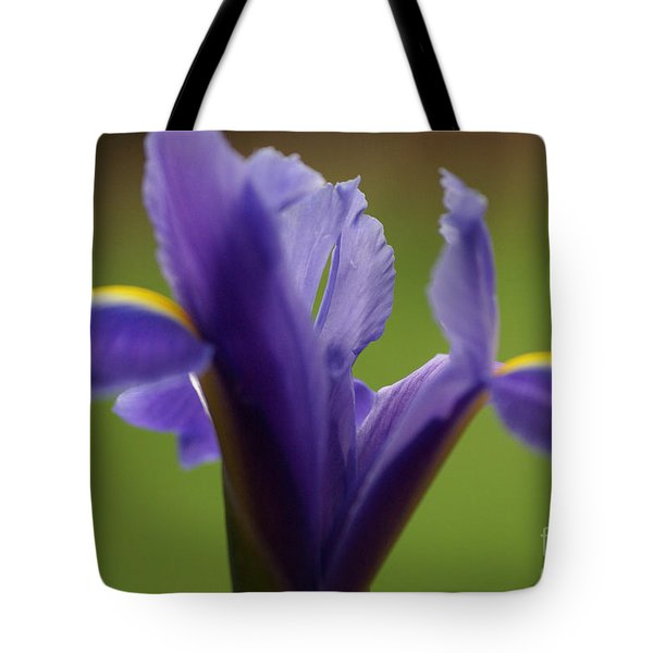 Purple Iris 7 Tote Bag by Carol Lynch