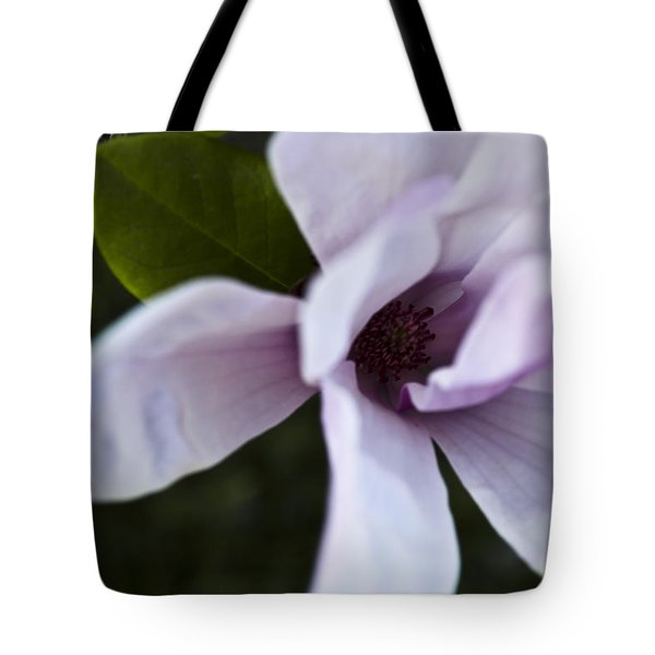 Purple Lily Magnolia Bloom Tote Bag