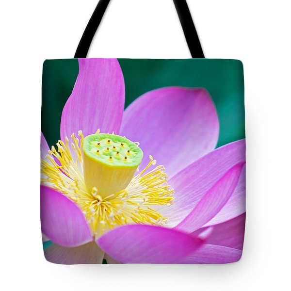 Purple Lotus Blossom Tote Bag