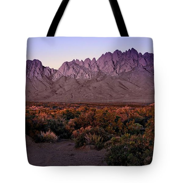 Tote Bag featuring the photograph Purple Mountain Majesty by Barbara Chichester