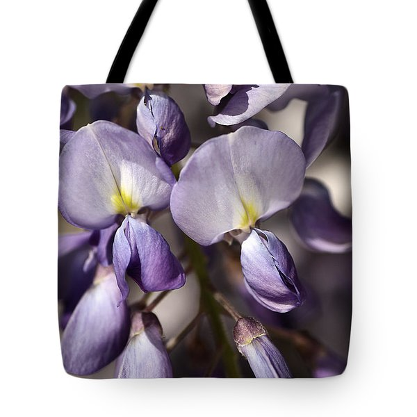 Tote Bag featuring the photograph Purple Of Wisteria by Joy Watson