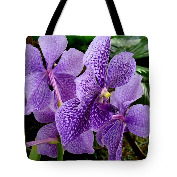 Purple Orchids Tote Bag by Carey Chen