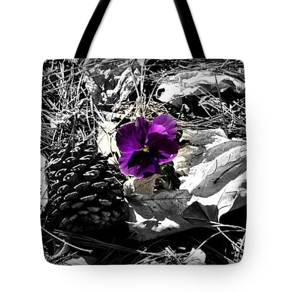 Tote Bag featuring the photograph Purple Pansy by Tara Potts