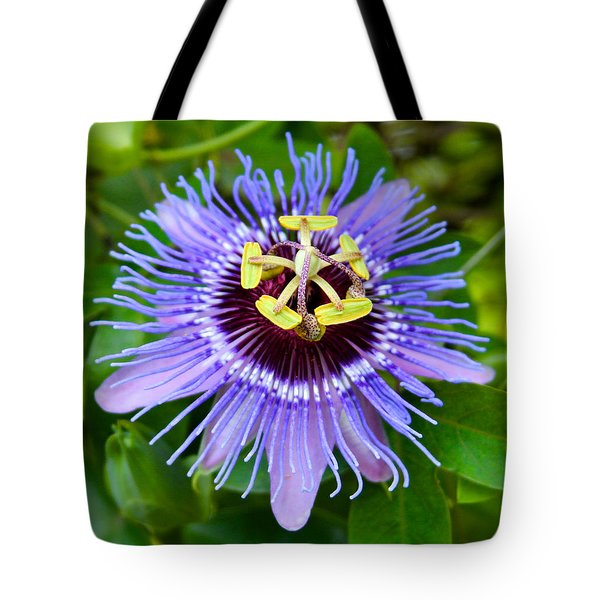 Purple Passion Flower Tote Bag by Venetia Featherstone-Witty
