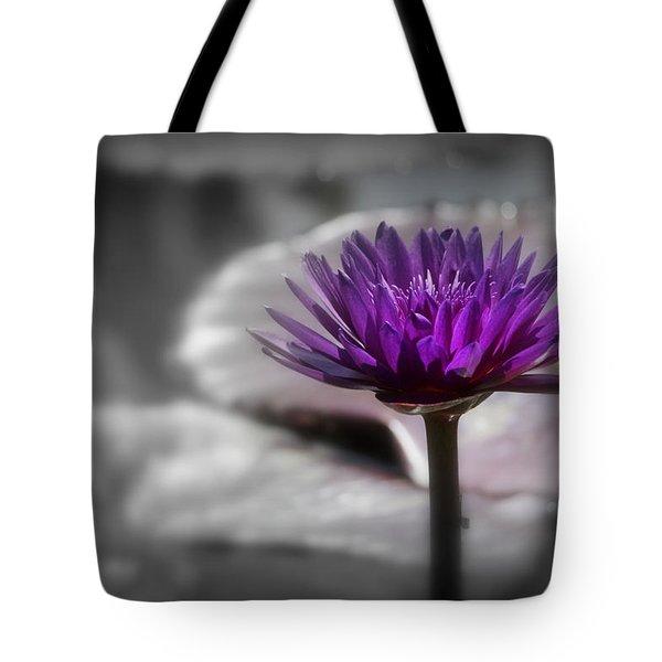 Purple Pond Lily Tote Bag