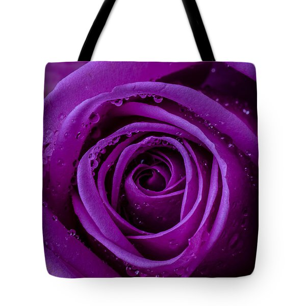 Purple Rose Close Up Tote Bag by Garry Gay