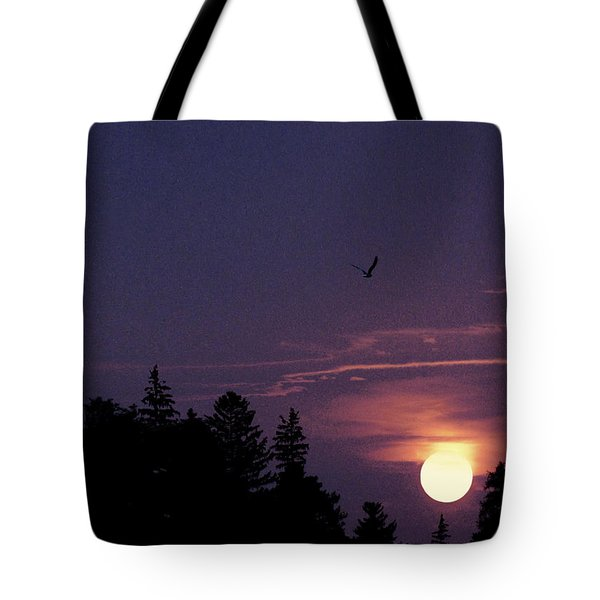 Tote Bag featuring the photograph Purple Sunset With Sea Gull by Peter v Quenter