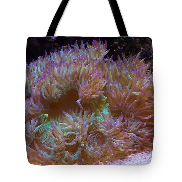 Purple Tipped Anemone Tote Bag