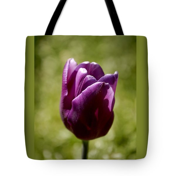 Purple Tulip Tote Bag by Donna Stiffler