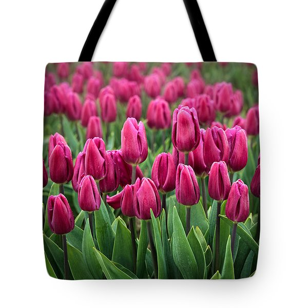 Purple Tulips Tote Bag by Inge Johnsson