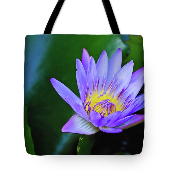 Purple Water Lily Tote Bag