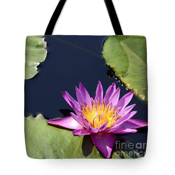 Purple Waterlilly Tote Bag
