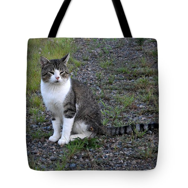 Purr-fectly Posed Tote Bag